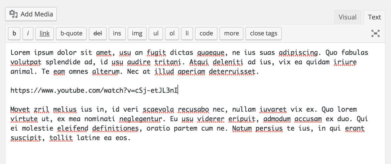 WordPress oEmbed Text Editor Example